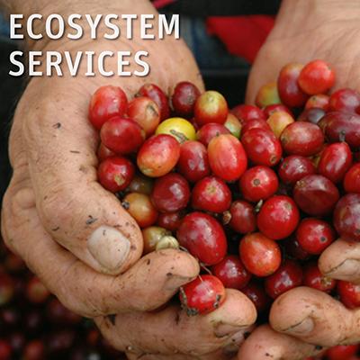 Inter-American Development Bank ~ Biodiversity Platform