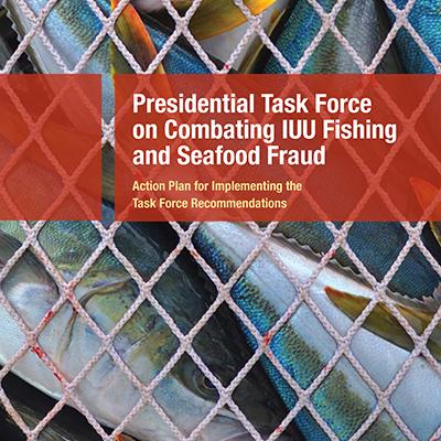 NOAA Fisheries ~ Rebranding